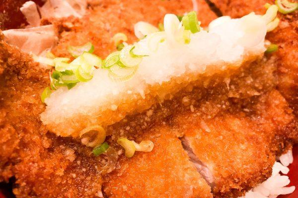 shoyu-tonkatsu-don-ristorante-sagami-web