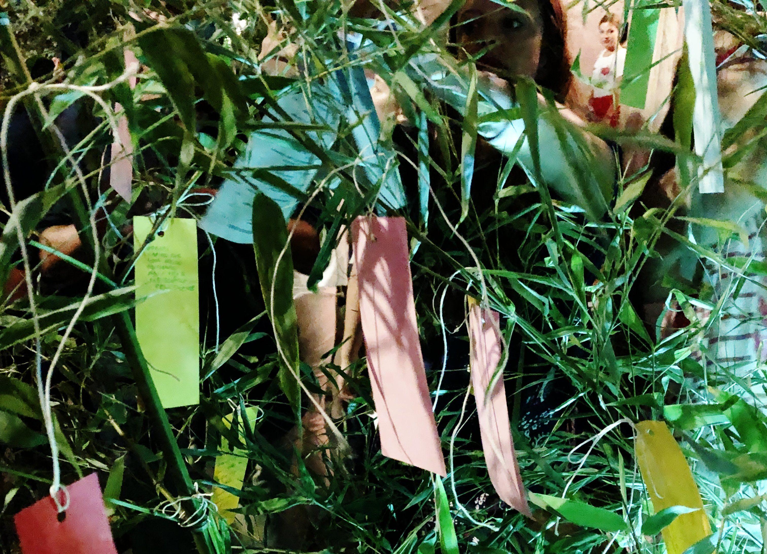 Tanabata 2019 al Planetario