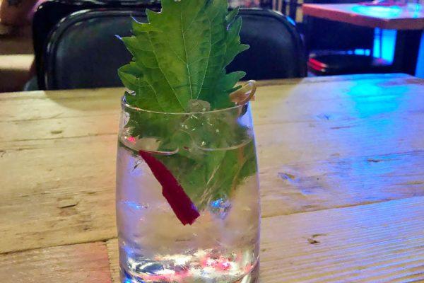 chemona-milano-cocktail-kingyo