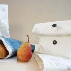 kasakoso-washi-paper-lunch-bag