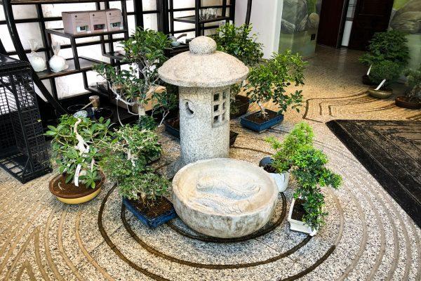 crespi-bonsai-milano